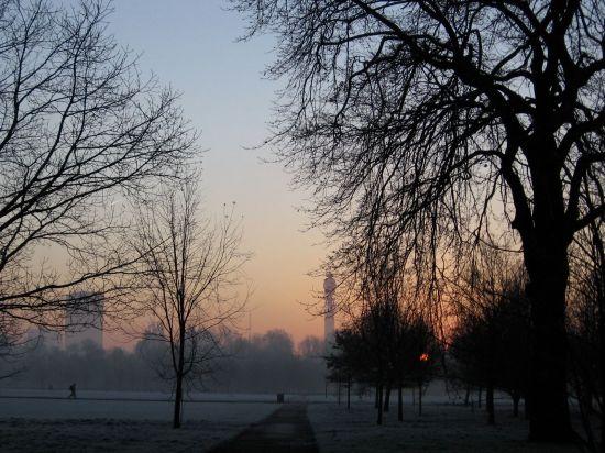 woodward-regents-park-frost2.jpg