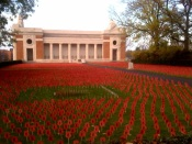 Flanders Field of Poppies - The Royal British Legion.